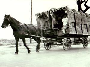 Strandkorbtransport im Ostseebad Kühlungsborn um 1926